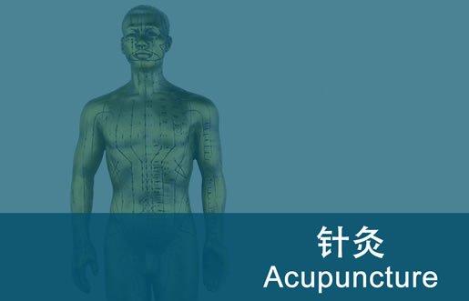 acupuncture diploma