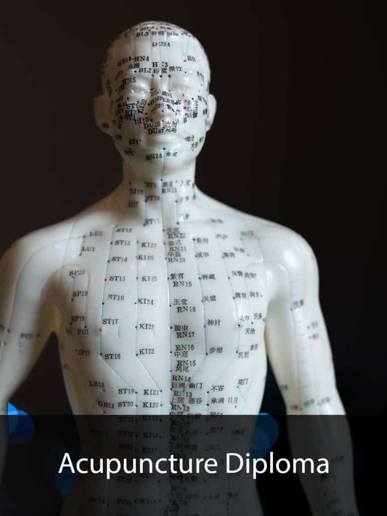 about us - Acupuncture diploma